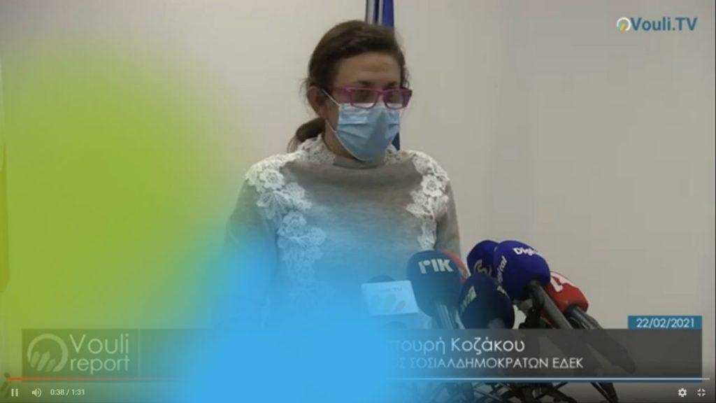 Έλενα Λυμπουρή Κοζάκου | Vouli report 22/02/2021